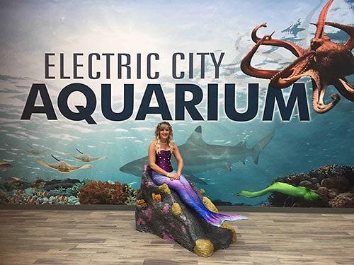 EC-Aquarium-500